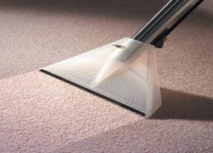 commercial carpet cleaning for your office
